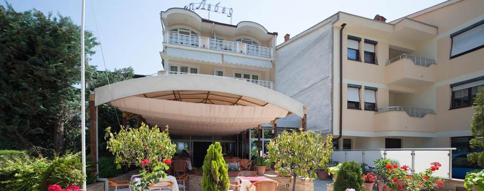Хотел Лебед 3***